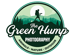 The Green Hump Logo