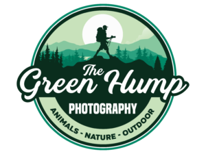 natuur- en dierenfotografie